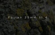 Fujian 25mm f1.4 test