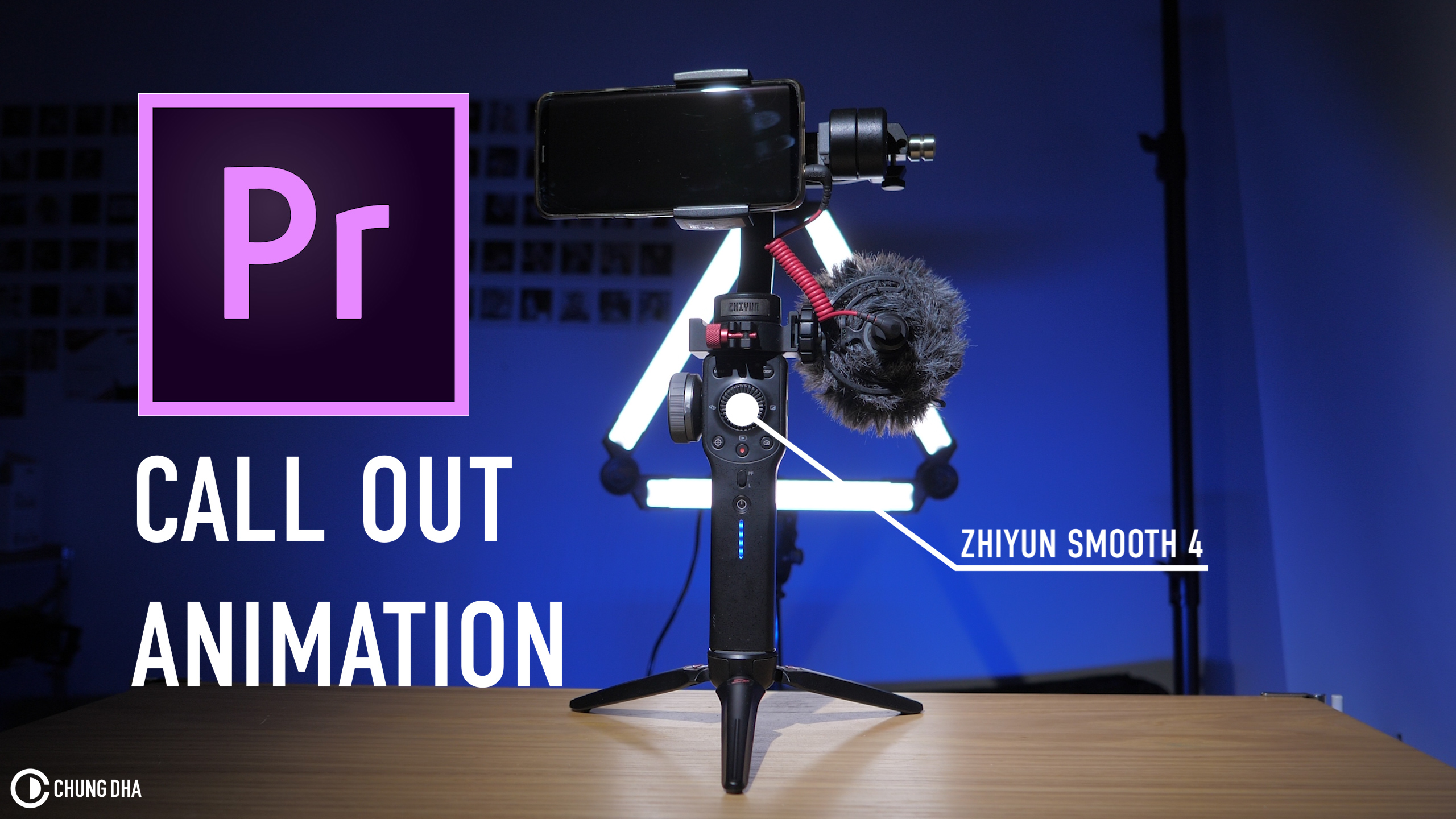 Call out animation Premiere Pro Tutorial